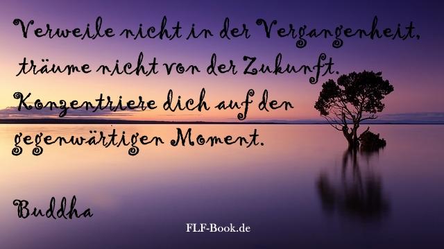 Verweile nicht in der Vergangenheit, träume nicht von der Zukunft. Konzentriere dich auf den gegenwärtigen Moment. Buddha (1)