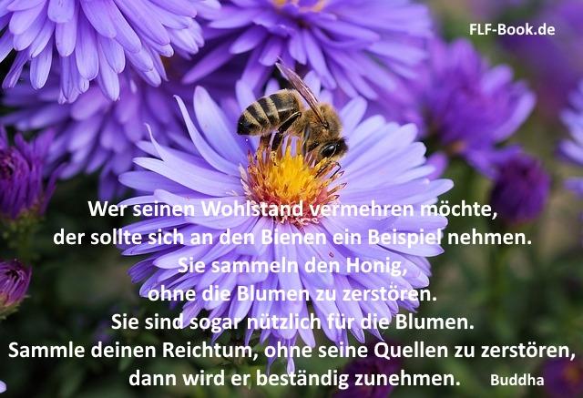 Wer seinen Wohlstand vermehren möchte, der sollte sich an den Bienen ein Beispiel nehmen. Buddha