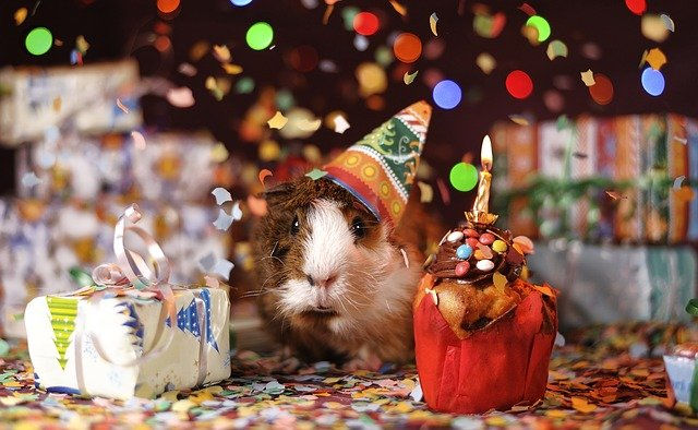 Geburtstag vergessen